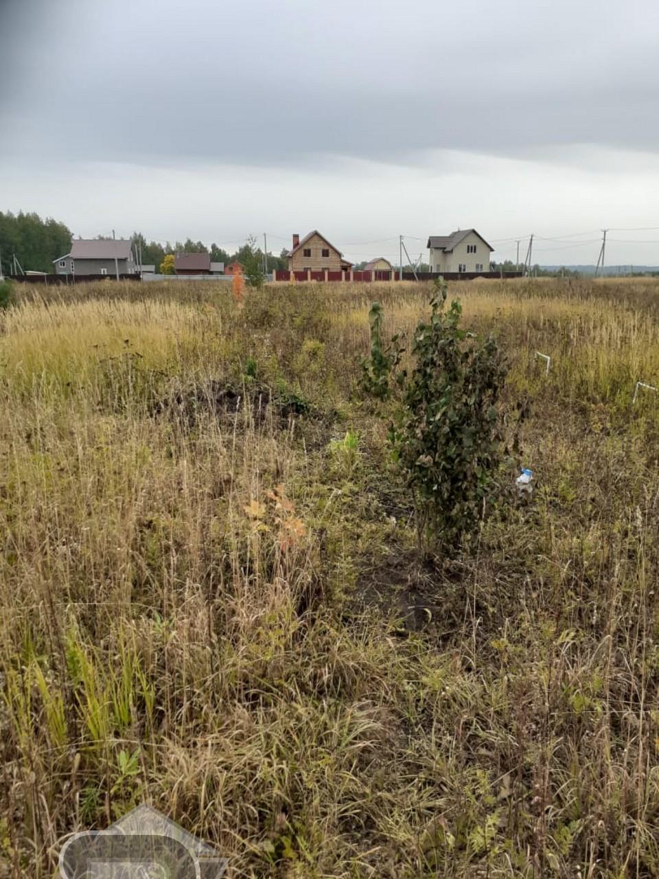 Купить землю, №341894